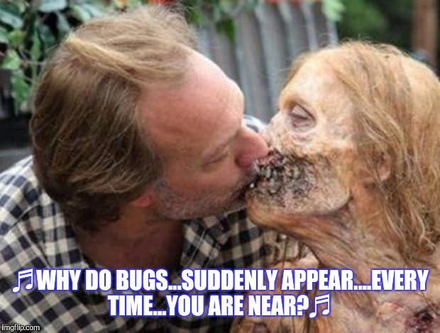 Love's in the air | ♬WHY DO BUGS...SUDDENLY APPEAR....EVERY TIME...YOU ARE NEAR?♬ | image tagged in zombie week,funny | made w/ Imgflip meme maker