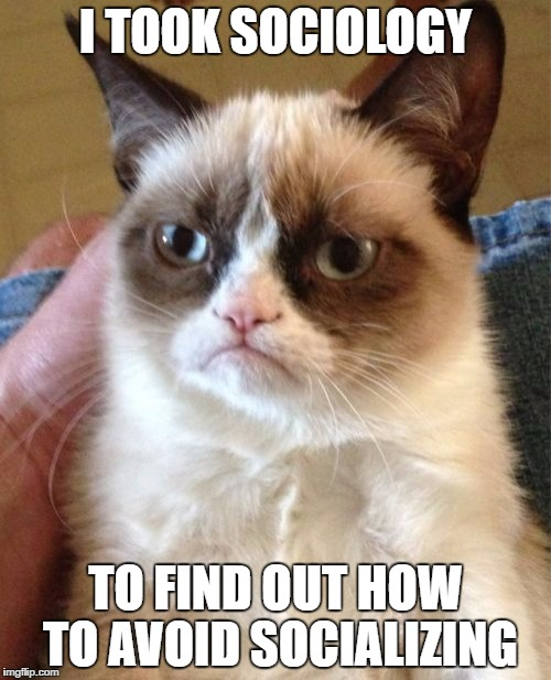 Grumpy Cat Meme | I TOOK SOCIOLOGY TO FIND OUT HOW TO AVOID SOCIALIZING | image tagged in memes,grumpy cat | made w/ Imgflip meme maker