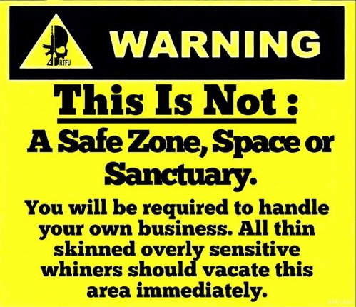 Safezone free space | image tagged in memes,safe space,danger zone,libtards,whiners,crybabies | made w/ Imgflip meme maker