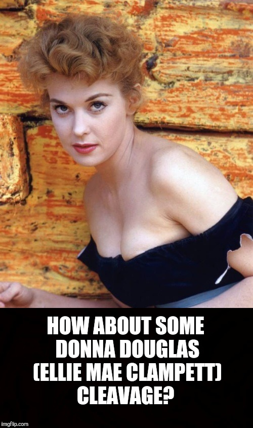 She didn't show them often, but when she did, we were blessed. (A late Cleavage Week submission) | HOW ABOUT SOME DONNA DOUGLAS (ELLIE MAE CLAMPETT) CLEAVAGE? | image tagged in donna douglas,ellie mae clampett,cleavage week,beverly hillbillies | made w/ Imgflip meme maker