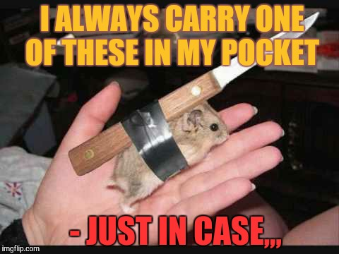 Lock and Load Hamster | I ALWAYS CARRY ONE OF THESE IN MY POCKET - JUST IN CASE,,, | image tagged in lock and load hamster | made w/ Imgflip meme maker