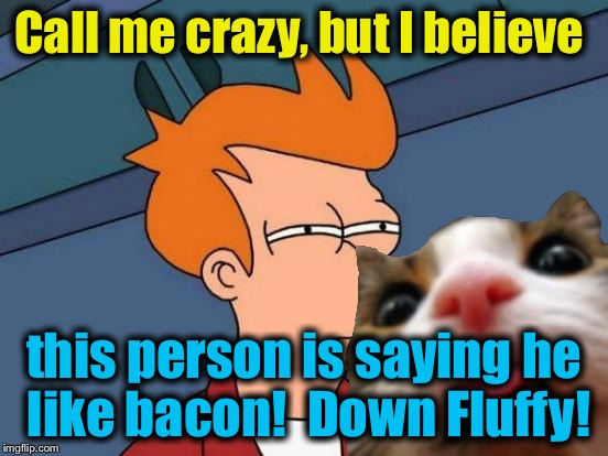 Futurama Fry Meme | Call me crazy, but I believe this person is saying he like bacon!  Down Fluffy! | image tagged in memes,futurama fry | made w/ Imgflip meme maker