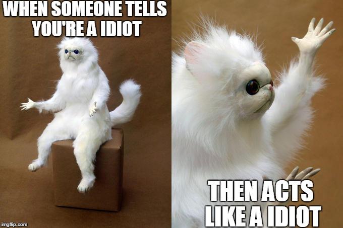 Persian Cat Room Guardian Meme | WHEN SOMEONE TELLS YOU'RE A IDIOT THEN ACTS LIKE A IDIOT | image tagged in memes,persian cat room guardian | made w/ Imgflip meme maker