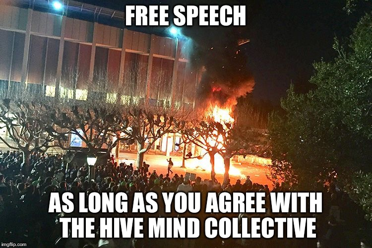 berkeley protests riots | FREE SPEECH AS LONG AS YOU AGREE WITH THE HIVE MIND COLLECTIVE | image tagged in berkeley protests riots | made w/ Imgflip meme maker