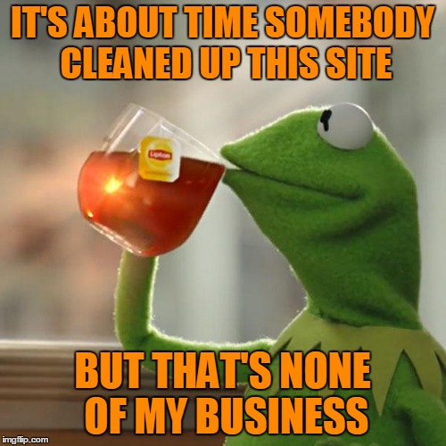 But Thats None Of My Business Meme | IT'S ABOUT TIME SOMEBODY CLEANED UP THIS SITE BUT THAT'S NONE OF MY BUSINESS | image tagged in memes,but thats none of my business,kermit the frog | made w/ Imgflip meme maker