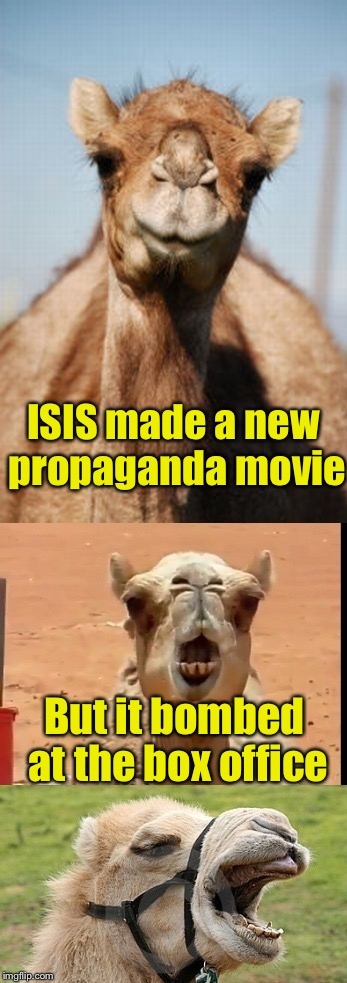 Bad Pun Camel |  ISIS made a new propaganda movie; But it bombed at the box office | image tagged in bad pun camel | made w/ Imgflip meme maker