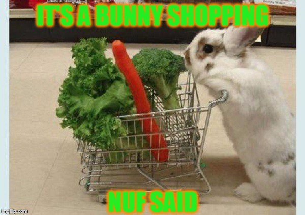 Cute Meme With Bunny | IT'S A BUNNY SHOPPING NUF SAID | image tagged in meme,cute,bunny,funny,aw | made w/ Imgflip meme maker