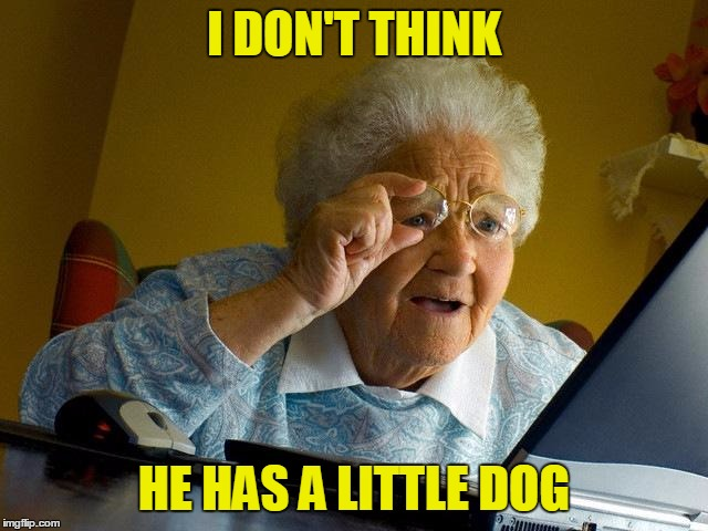 Grandma Finds The Internet Meme | I DON'T THINK HE HAS A LITTLE DOG | image tagged in memes,grandma finds the internet | made w/ Imgflip meme maker