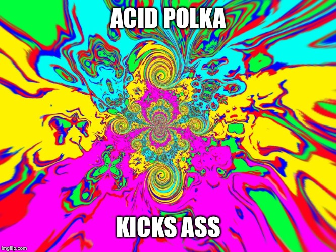ACID POLKA KICKS ASS | made w/ Imgflip meme maker