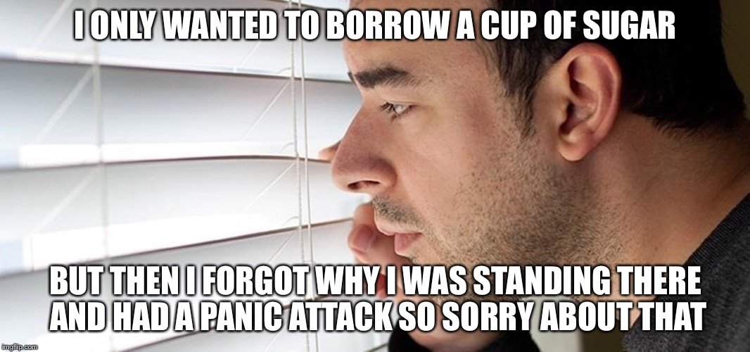 I ONLY WANTED TO BORROW A CUP OF SUGAR BUT THEN I FORGOT WHY I WAS STANDING THERE AND HAD A PANIC ATTACK SO SORRY ABOUT THAT | made w/ Imgflip meme maker