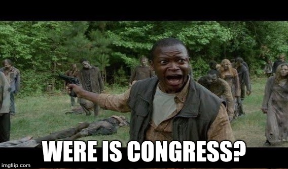 WERE IS CONGRESS? | made w/ Imgflip meme maker