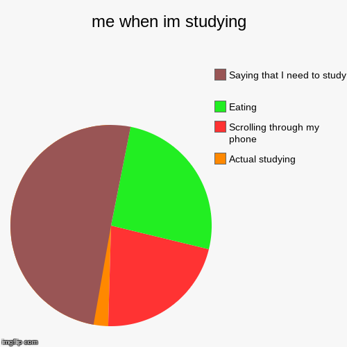 me when im studying  | Actual studying , Scrolling through my phone , Eating, Saying that I need to study | image tagged in funny,pie charts | made w/ Imgflip pie chart maker