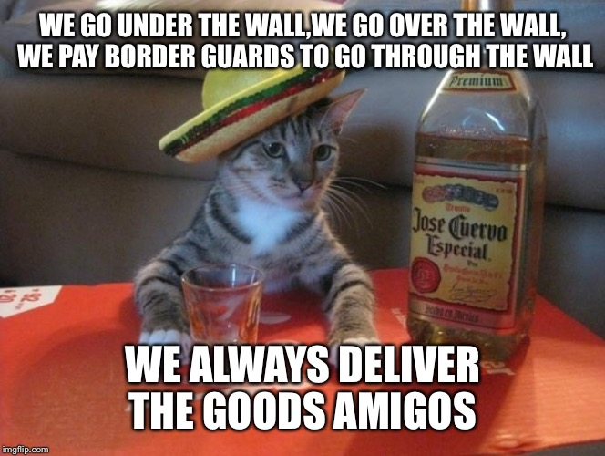WE GO UNDER THE WALL,WE GO OVER THE WALL, WE PAY BORDER GUARDS TO GO THROUGH THE WALL WE ALWAYS DELIVER THE GOODS AMIGOS | made w/ Imgflip meme maker