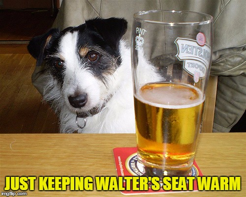 JUST KEEPING WALTER'S SEAT WARM | made w/ Imgflip meme maker