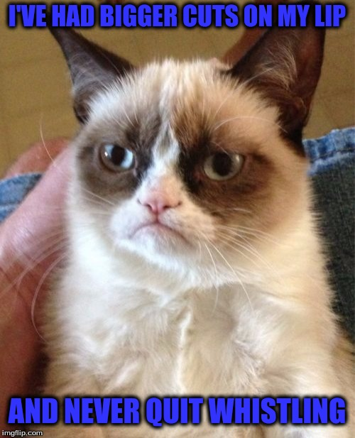 Grumpy Cat Meme | I'VE HAD BIGGER CUTS ON MY LIP AND NEVER QUIT WHISTLING | image tagged in memes,grumpy cat | made w/ Imgflip meme maker
