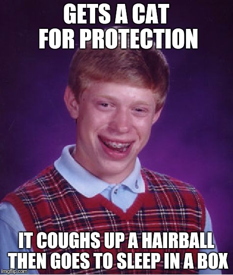 Bad Luck Brian Meme | GETS A CAT FOR PROTECTION IT COUGHS UP A HAIRBALL THEN GOES TO SLEEP IN A BOX | image tagged in memes,bad luck brian | made w/ Imgflip meme maker