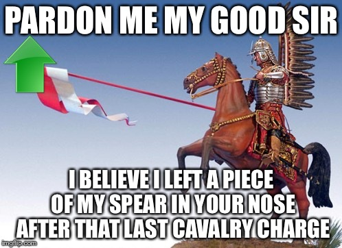 PARDON ME MY GOOD SIR I BELIEVE I LEFT A PIECE OF MY SPEAR IN YOUR NOSE AFTER THAT LAST CAVALRY CHARGE | made w/ Imgflip meme maker