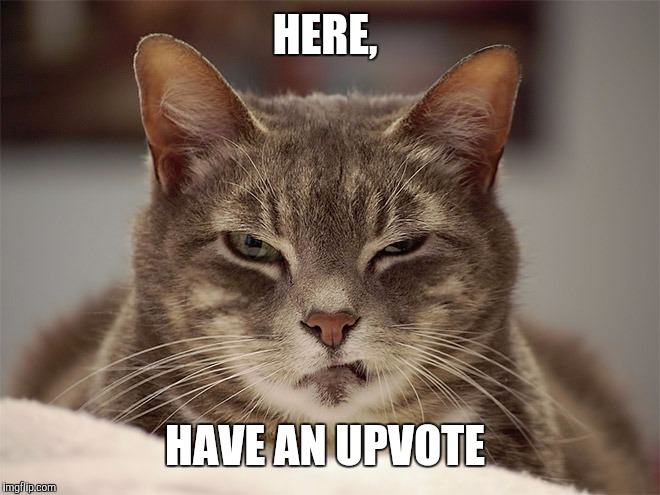 Sarcasm Cat | HERE, HAVE AN UPVOTE | image tagged in sarcasm cat | made w/ Imgflip meme maker