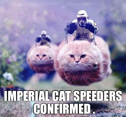 Cat speeders  |  IMPERIAL CAT SPEEDERS CONFIRMED . | image tagged in star wars cats | made w/ Imgflip meme maker