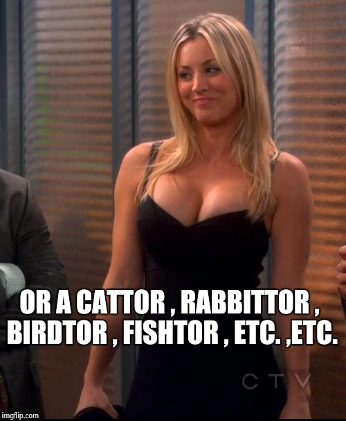 Hot Penny | OR A CATTOR , RABBITTOR , BIRDTOR , FISHTOR , ETC. ,ETC. | image tagged in hot penny | made w/ Imgflip meme maker