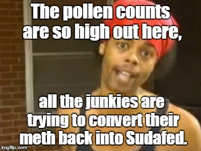 Hide Yo Kids Hide Yo Wife Meme | The pollen counts are so high out here, all the junkies are trying to convert their meth back into Sudafed. | image tagged in memes,hide yo kids hide yo wife | made w/ Imgflip meme maker