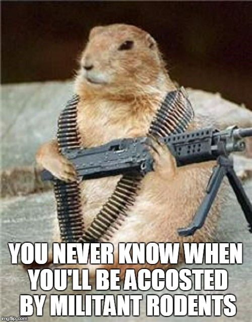 YOU NEVER KNOW WHEN YOU'LL BE ACCOSTED BY MILITANT RODENTS | made w/ Imgflip meme maker
