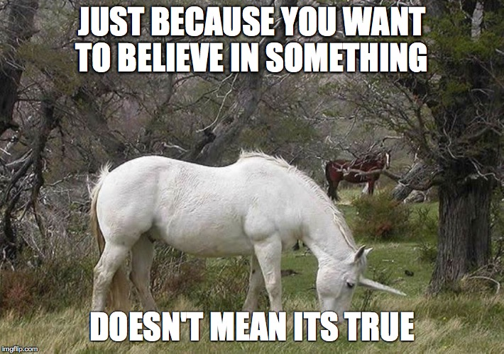 JUST BECAUSE YOU WANT TO BELIEVE IN SOMETHING DOESN'T MEAN ITS TRUE | image tagged in unicorn | made w/ Imgflip meme maker