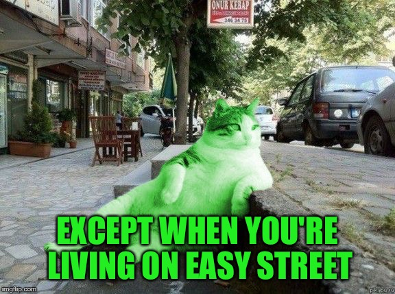 RayCat relaxing | EXCEPT WHEN YOU'RE LIVING ON EASY STREET | image tagged in raycat relaxing | made w/ Imgflip meme maker