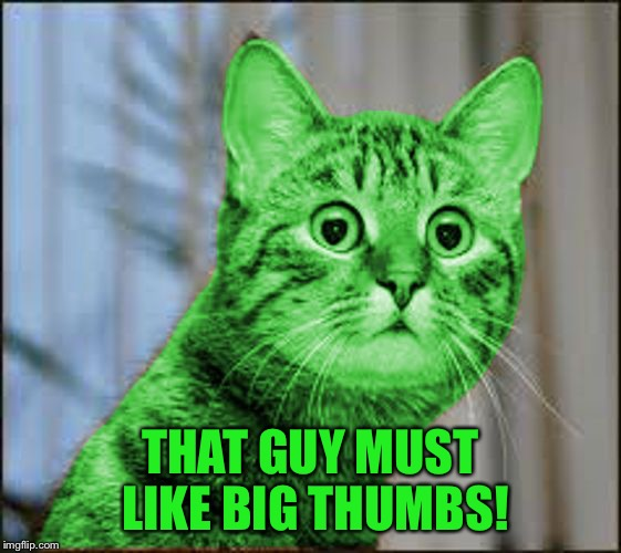 RayCat WTF | THAT GUY MUST LIKE BIG THUMBS! | image tagged in raycat wtf | made w/ Imgflip meme maker