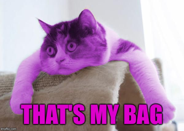 RayCat Stare | THAT'S MY BAG | image tagged in raycat stare | made w/ Imgflip meme maker