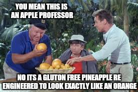 Fine...you save the planet, while i pay the taxi's fare  | YOU MEAN THIS IS AN APPLE PROFESSOR NO ITS A GLUTON FREE PINEAPPLE RE ENGINEERED TO LOOK EXACTLY LIKE AN ORANGE | image tagged in memes,vegan4life,first world problems,dating,funny | made w/ Imgflip meme maker