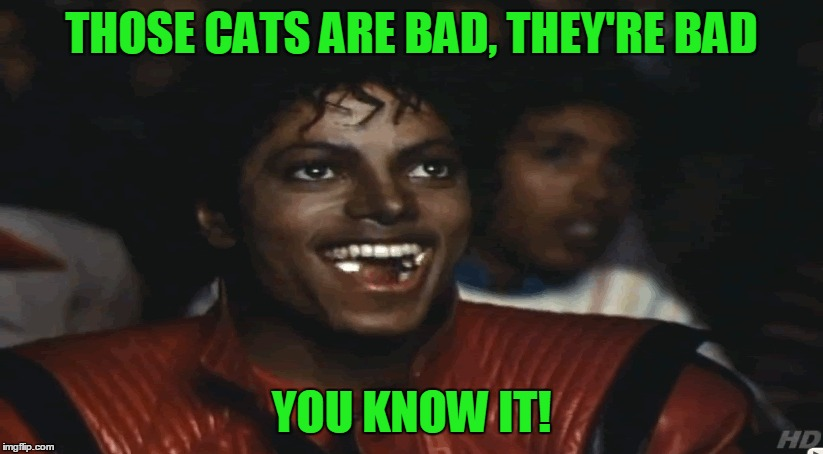 THOSE CATS ARE BAD, THEY'RE BAD YOU KNOW IT! | made w/ Imgflip meme maker