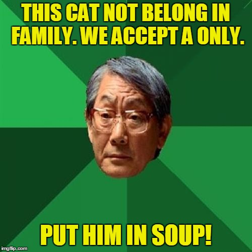 THIS CAT NOT BELONG IN FAMILY. WE ACCEPT A ONLY. PUT HIM IN SOUP! | made w/ Imgflip meme maker