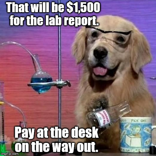 I Have No Idea What I Am Doing Dog | That will be $1,500 for the lab report. Pay at the desk on the way out. | image tagged in memes,i have no idea what i am doing dog | made w/ Imgflip meme maker