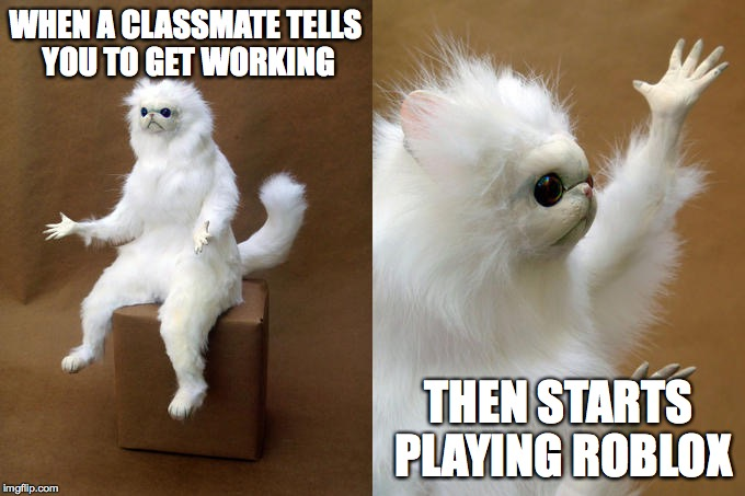 Persian Cat Room Guardian Meme | WHEN A CLASSMATE TELLS YOU TO GET WORKING THEN STARTS PLAYING ROBLOX | image tagged in memes,persian cat room guardian | made w/ Imgflip meme maker