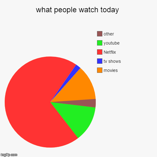 what people watch today | movies, tv shows, Netflix, youtube, other | image tagged in funny,pie charts | made w/ Imgflip chart maker