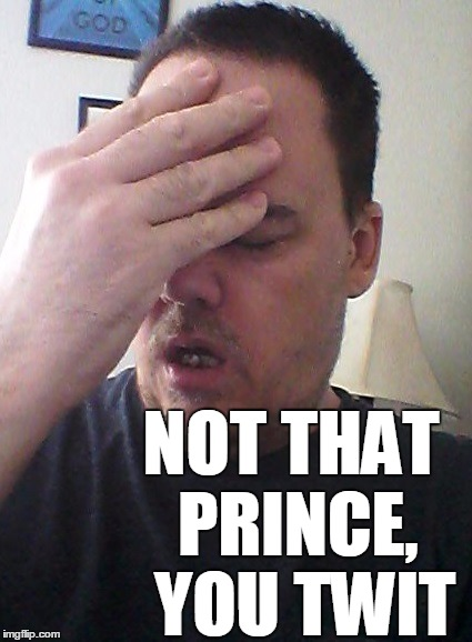 face palm | NOT THAT PRINCE,  YOU TWIT | image tagged in face palm | made w/ Imgflip meme maker
