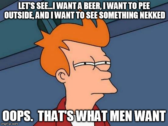 Futurama Fry Meme | LET'S SEE...I WANT A BEER, I WANT TO PEE OUTSIDE, AND I WANT TO SEE SOMETHING NEKKED OOPS.  THAT'S WHAT MEN WANT | image tagged in memes,futurama fry | made w/ Imgflip meme maker