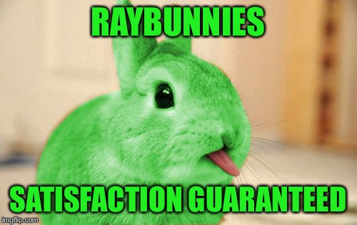 RayBunny | RAYBUNNIES SATISFACTION GUARANTEED | image tagged in raybunny | made w/ Imgflip meme maker