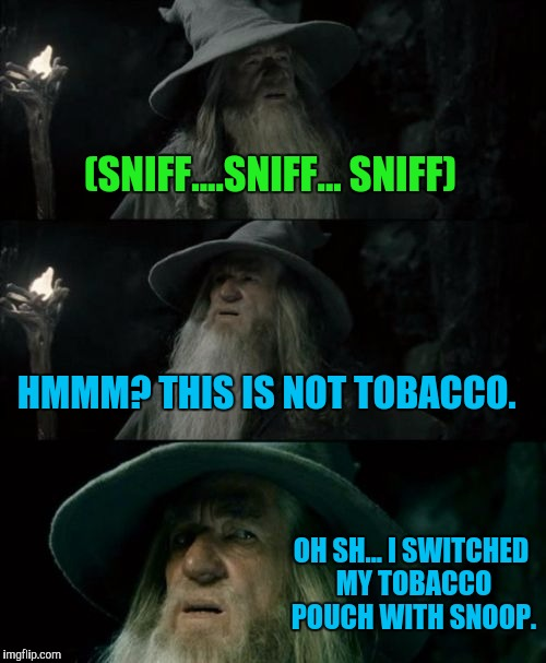 Confused Gandalf Meme | (SNIFF....SNIFF... SNIFF) HMMM? THIS IS NOT TOBACCO. OH SH... I SWITCHED MY TOBACCO POUCH WITH SNOOP. | image tagged in memes,confused gandalf | made w/ Imgflip meme maker
