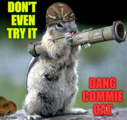 DON'T EVEN TRY IT DANG COMMIE CAT | made w/ Imgflip meme maker