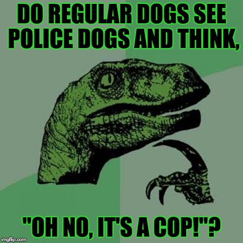 "Now that's asking a real question... | DO REGULAR DOGS SEE POLICE DOGS AND THINK, ""OH NO, IT'S A COP!""? 