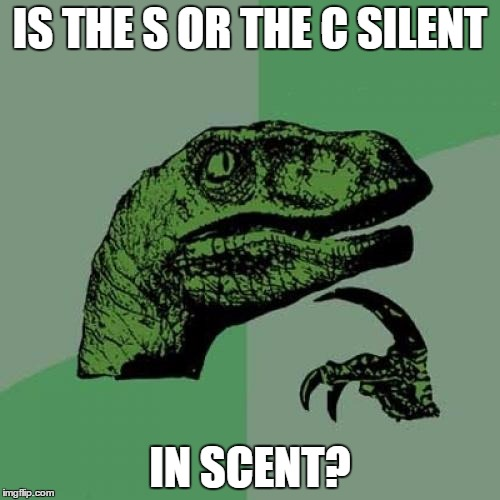 Philosoraptor Meme | IS THE S OR THE C SILENT IN SCENT? | image tagged in memes,philosoraptor | made w/ Imgflip meme maker