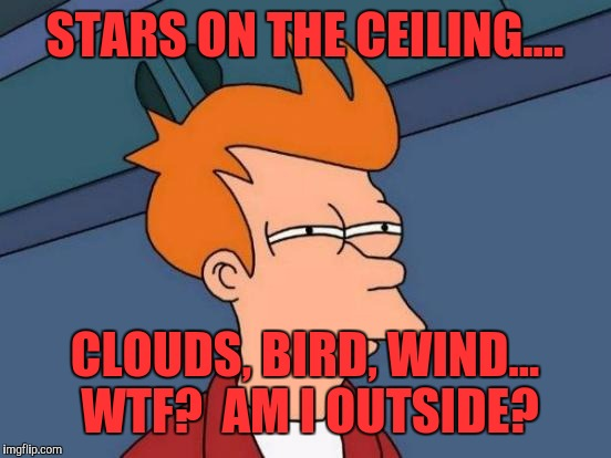 Futurama Fry Meme | STARS ON THE CEILING.... CLOUDS, BIRD, WIND... WTF?  AM I OUTSIDE? | image tagged in memes,futurama fry | made w/ Imgflip meme maker