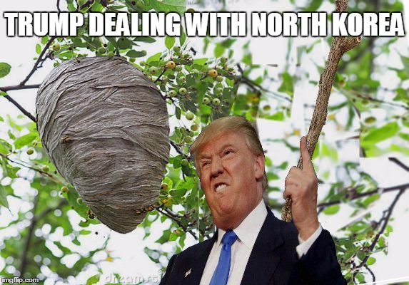 Trump vs North Korea | TRUMP DEALING WITH NORTH KOREA | image tagged in trump,bees,nest,fail | made w/ Imgflip meme maker