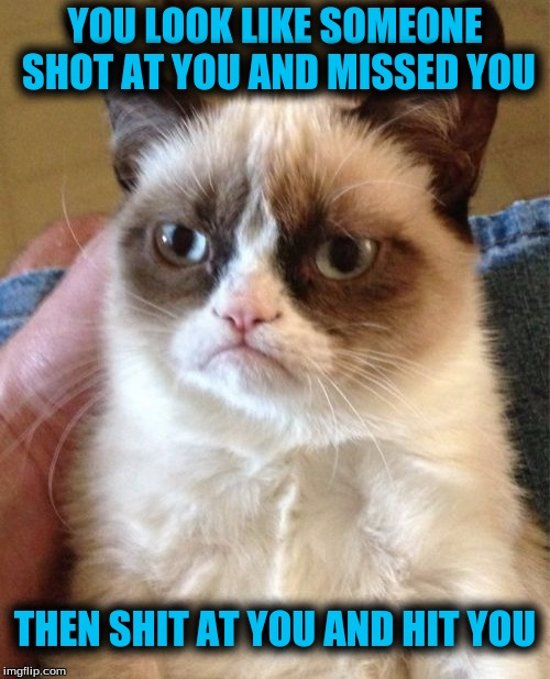 Grumpy Cat Meme | YOU LOOK LIKE SOMEONE SHOT AT YOU AND MISSED YOU THEN SHIT AT YOU AND HIT YOU | image tagged in memes,grumpy cat | made w/ Imgflip meme maker