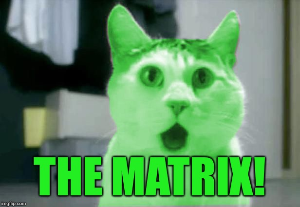 OMG RayCat | THE MATRIX! | image tagged in omg raycat | made w/ Imgflip meme maker