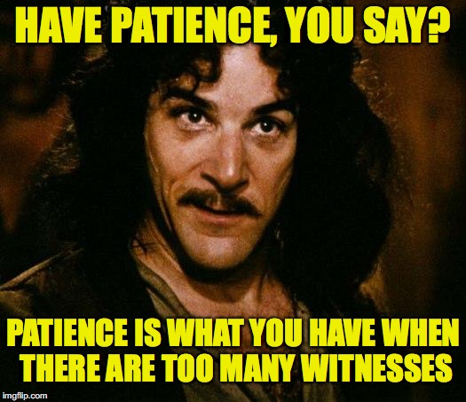 En Garde | HAVE PATIENCE, YOU SAY? PATIENCE IS WHAT YOU HAVE WHEN THERE ARE TOO MANY WITNESSES | image tagged in memes,inigo montoya,patience | made w/ Imgflip meme maker