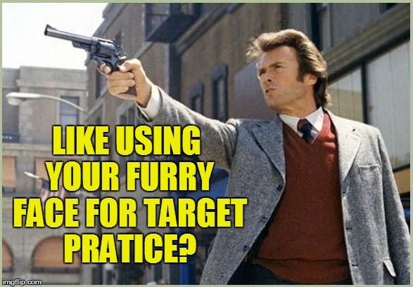 LIKE USING YOUR FURRY FACE FOR TARGET PRATICE? | made w/ Imgflip meme maker