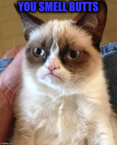 Grumpy Cat Meme | YOU SMELL BUTTS | image tagged in memes,grumpy cat | made w/ Imgflip meme maker